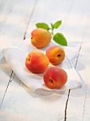 Apricots on a cloth