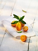 Kumquats on a cloth
