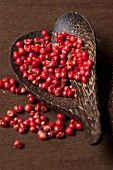 Pink peppercorns in a wooden dish with a spoon