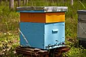 Altes Bienenhaus in Frankreich