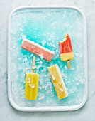 Ice lollies and ice cream sticks on ice cubes