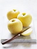 Three Nashi pears