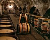 Arbeiter einer Weinkellerei, ein Weinfass rollend