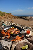 Scampi on a barbecue on a beach