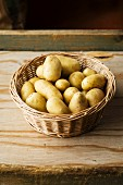A basket of fresh Amandine potatoes