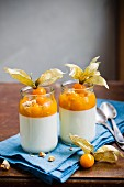 Yoghurt cream with physalis