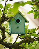 Nesting box in tree in garden