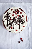 Black Forest Gateau with cranberries for Christmas