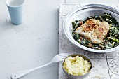 Fish fillet on a bed of yogurt spinach