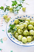 Fresh green gooseberries