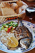 Grilled fish with rice and salad