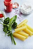 Stillleben mit Zutaten für Nudelgericht