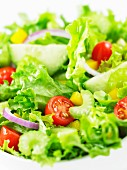 Salad with cherry tomatoes, cucumber, pepper and onions