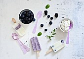 Homemade blueberry ice cream and ingredients