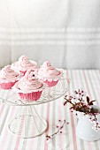 Pink cupcakes decorated with buttercream