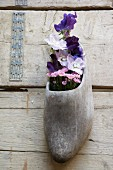 Purple flowers in a clog