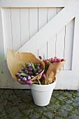 Pinkfarbene und violette Tulpensträusse in Papier eingewickelt im weissen Blumentopf vor weisser Holztür