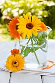 Pot marigolds (Calendula officinalis) in glass jug on garden table