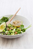 Spinach salad with courgettes, broad beans, avocado, walnuts and an olive and lime dressing