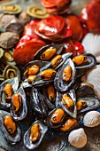 Muscheln aus Marzipan