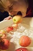 A little boy bobbing for apples