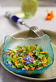 A wild herb salad with edible flowers