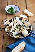 Clams in white wine with coriander, garlic and bread