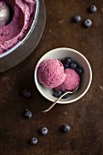 Blueberry ice cream and fresh blueberries