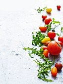 Various types of tomatoes and rocket