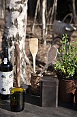 Cooking utensils in containers between wine bottles and pots of herbs on table in woods