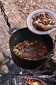 Meat stew in bowl and in iron cooking pot suspended over campfire