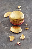 A golden macaroon and biscuit crumbs