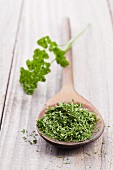 Dried parsley on a wooden spoon with a sprig of fresh parsley