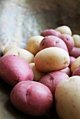 Various potatoes on a pair of old kitchen scales (close-up)
