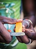 Person schneidet Kurkumawurzel auf einer Gewürzplantage (Sansibar)