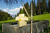 An arrangement of Alpbachtal Heumilchkäse (cheese made from silage-free milk) on a cattle trough in Alpbachtal (Tyrol, Austria)