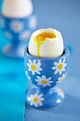 A soft-boiled egg in a flowered egg cup