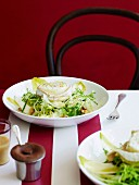 Toasted goat s cheese salad