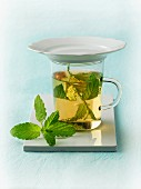 Fresh mint in a glass cup