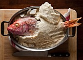Red snapper in a salt crust