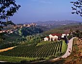 Poderi Aldo Conterno and village of Castiglione Falletto. Monforte d Alba, Piemonte, Italy. [Barolo]