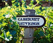 Sign in Cabernet Sauvignon vineyard of Beringer. St Helena, Napa Valley, California, USA.
