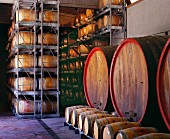 Botti and barriques in winery of Giordano. Valle Talloria d Alba, Piemonte, Italy.