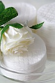 Wattepads und eine weisse Rosenblüte (Close Up)