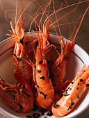 Tea-sautéed prawns
