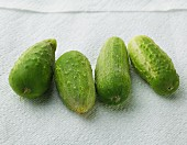 Four small gherkins on a piece of kitchen towel