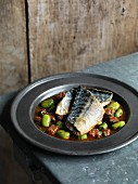 Mackerel fillet with broad beans and chorizo
