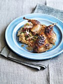 Marinated grilled quail with pomegranate and radicchio salad