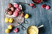 Various colourful macaroons