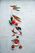 Chillis: fresh, dried, chilli powder and chilli flakes